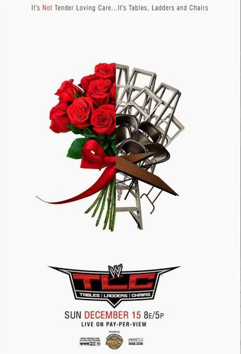WWE TLC Tables Ladders & Chairs 2013 Poster