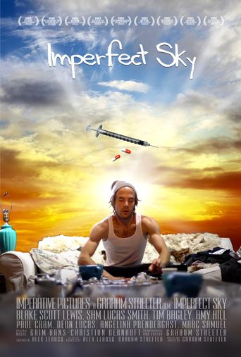 Imperfect Sky Poster