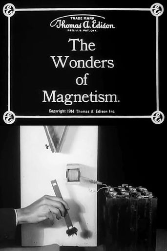 The Wonders of Magnetism Poster