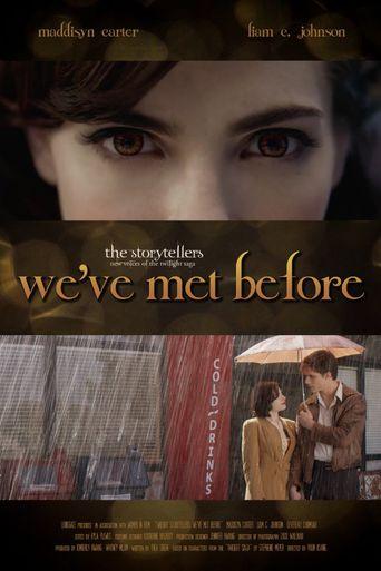 Twilight Storytellers: We've Met Before Poster