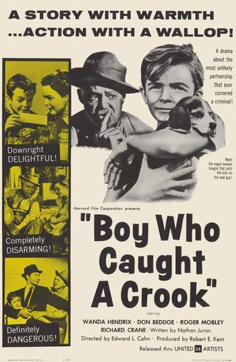 Boy Who Caught a Crook Poster