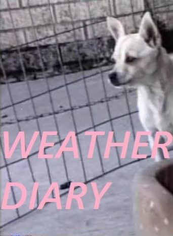 Weather Diary 3 Poster
