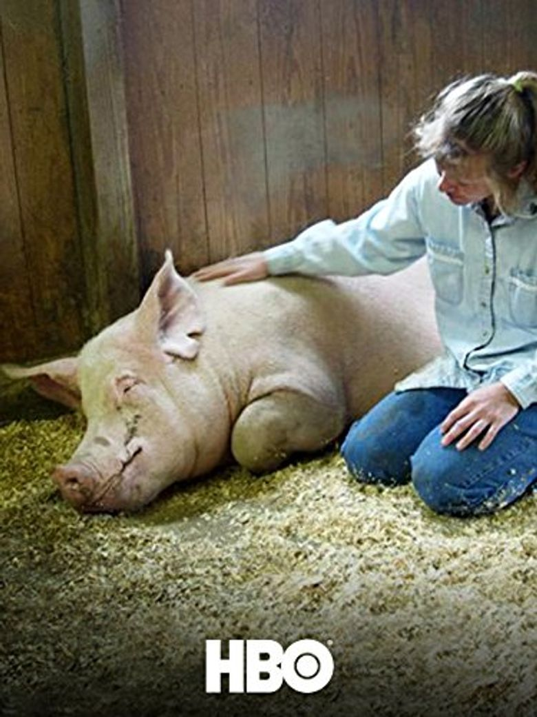 Death on a Factory Farm Poster