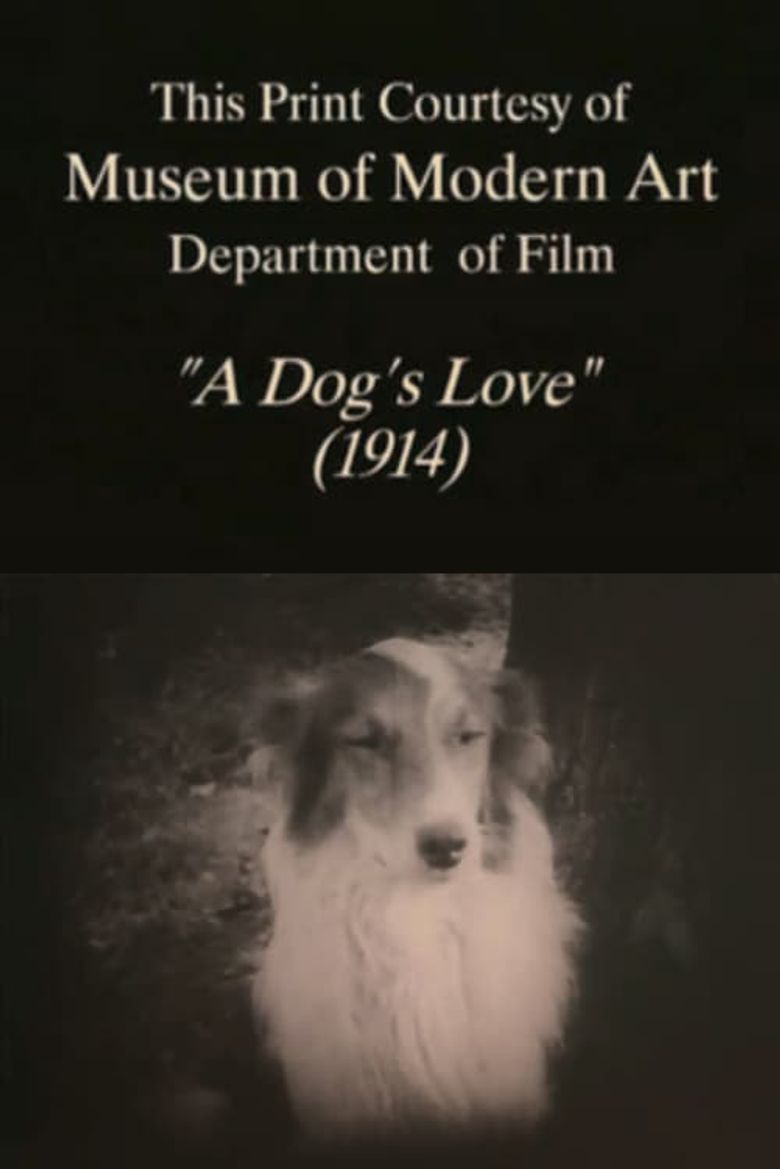 A Dog's Love Poster
