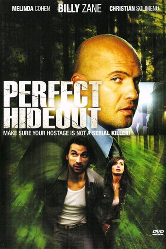 Perfect Hideout Poster