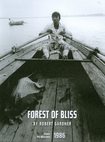Forest of Bliss Poster