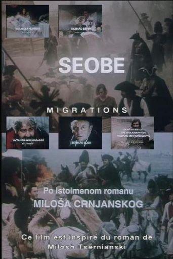 Migrations II Poster