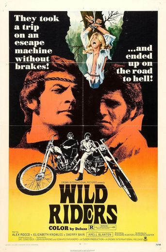Wild Riders Poster