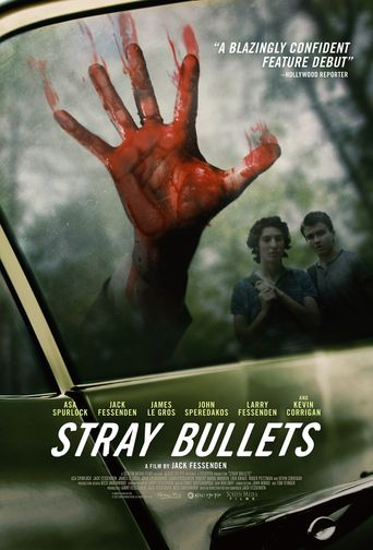 Watch Stray Bullets