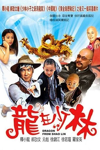 Dragon from Shaolin Poster