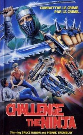 Challenge of the Ninja Poster