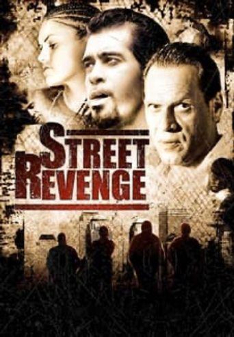Street Revenge Poster
