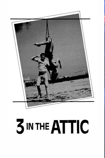 Three in the Attic Poster
