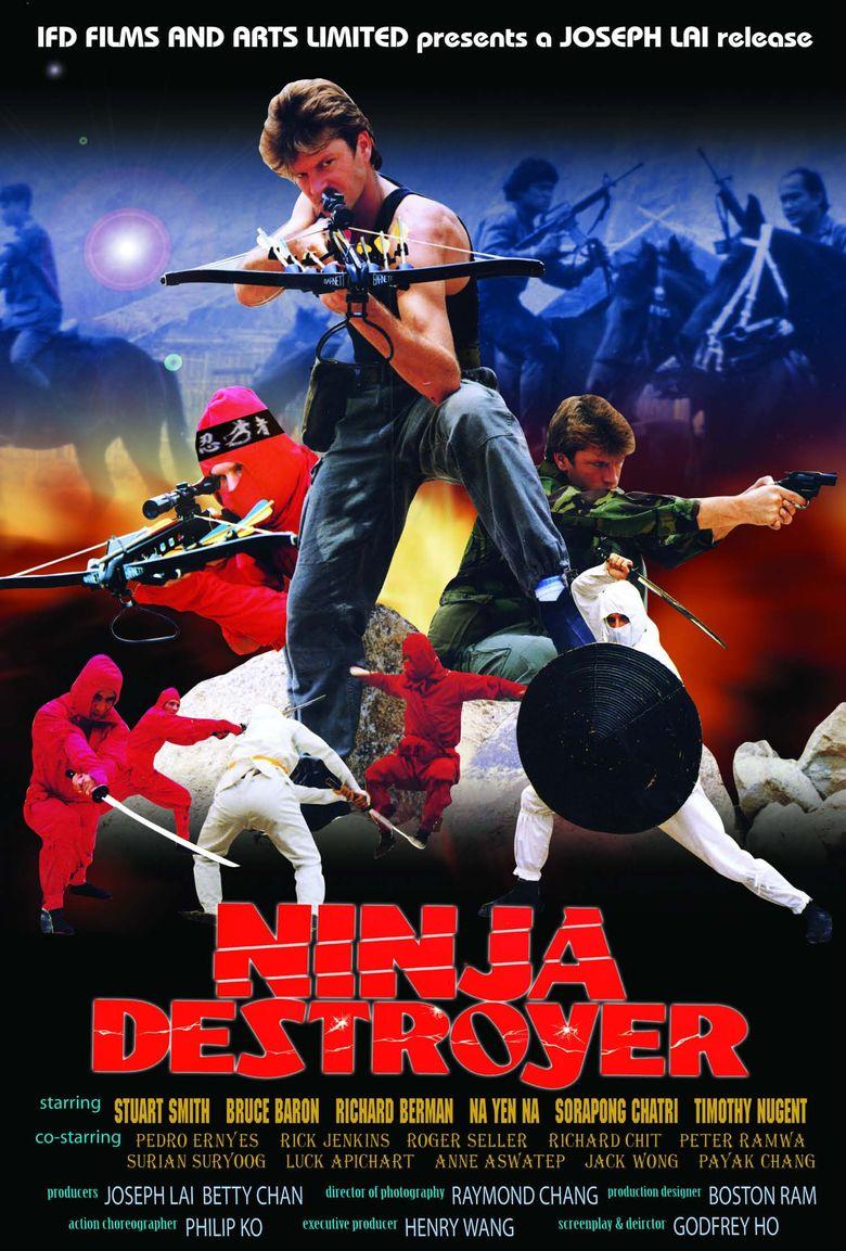 Ninja Destroyer Poster