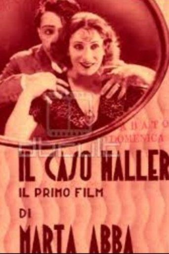 The Haller Case Poster