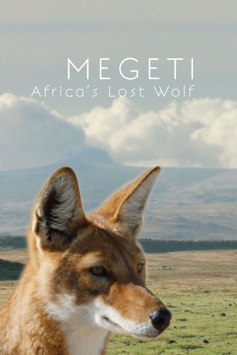 Africa's Lost Wolves Poster