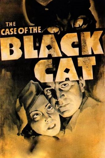 The Case of the Black Cat Poster