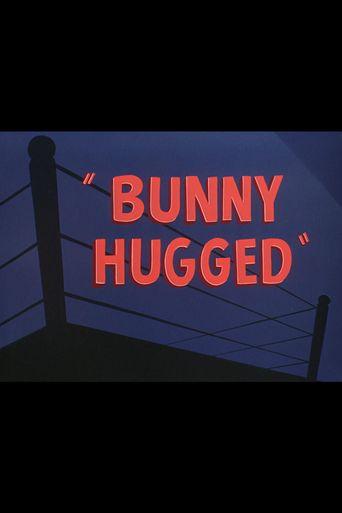Bunny Hugged Poster