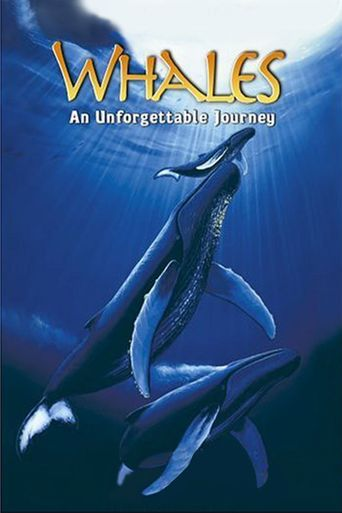 Whales: An Unforgettable Journey Poster