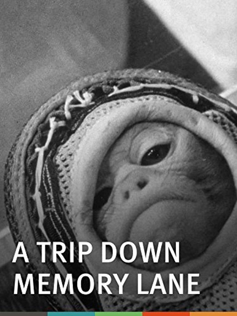 A Trip Down Memory Lane Poster