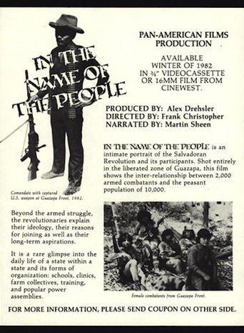 In the Name of the People Poster