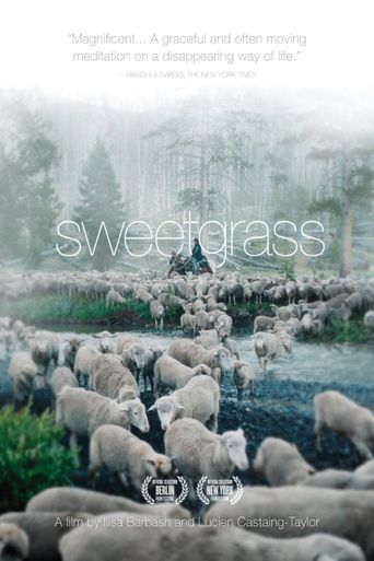 Sweetgrass Poster
