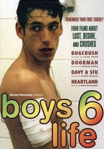 Boys Life 6 Poster