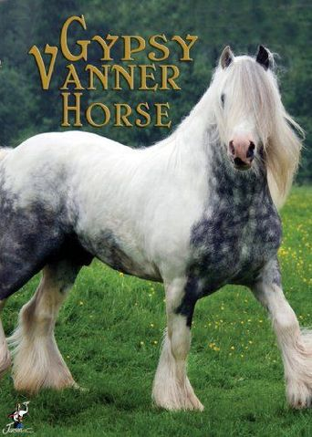 The Gypsy Vanner Horse Poster