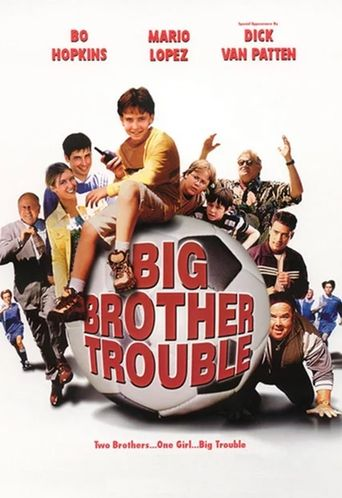 Big Brother Trouble Poster