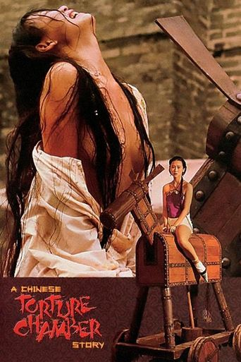 A Chinese Torture Chamber Story Poster