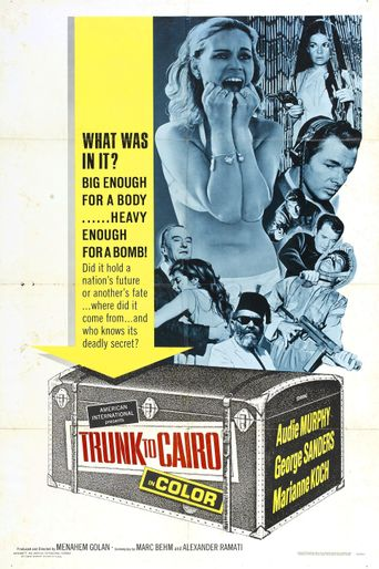 Trunk to Cairo Poster