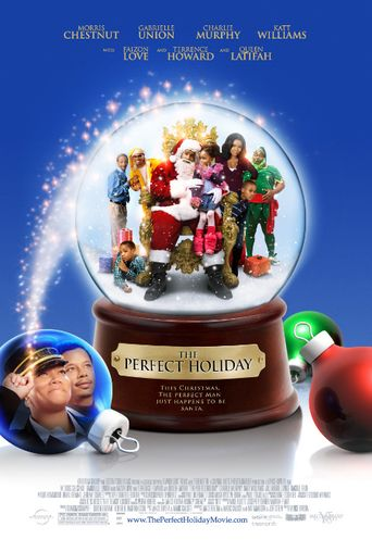 Watch The Perfect Holiday