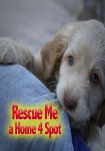 Rescue Me: A Home 4 Spot Poster