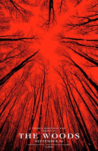 Neverending Night: The Making of Blair Witch Poster