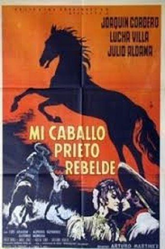 Mi caballo prieto rebelde Poster