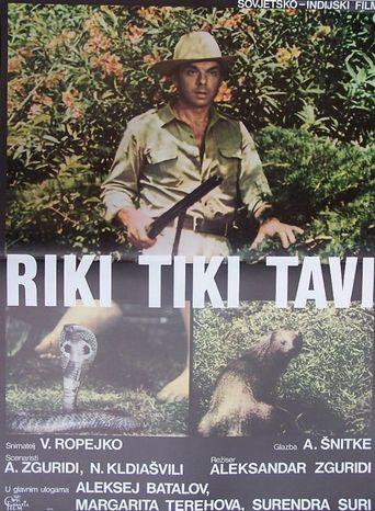 Rikki-Tikki-Tavi Poster