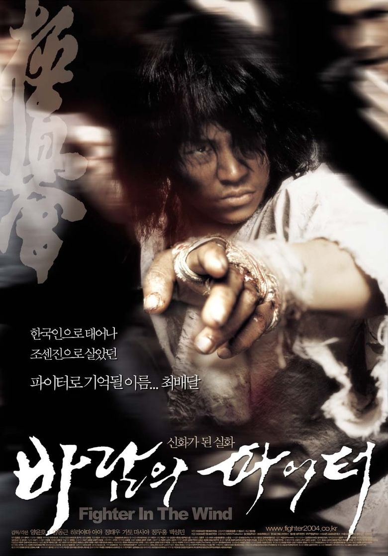 Fighter in the Wind Poster