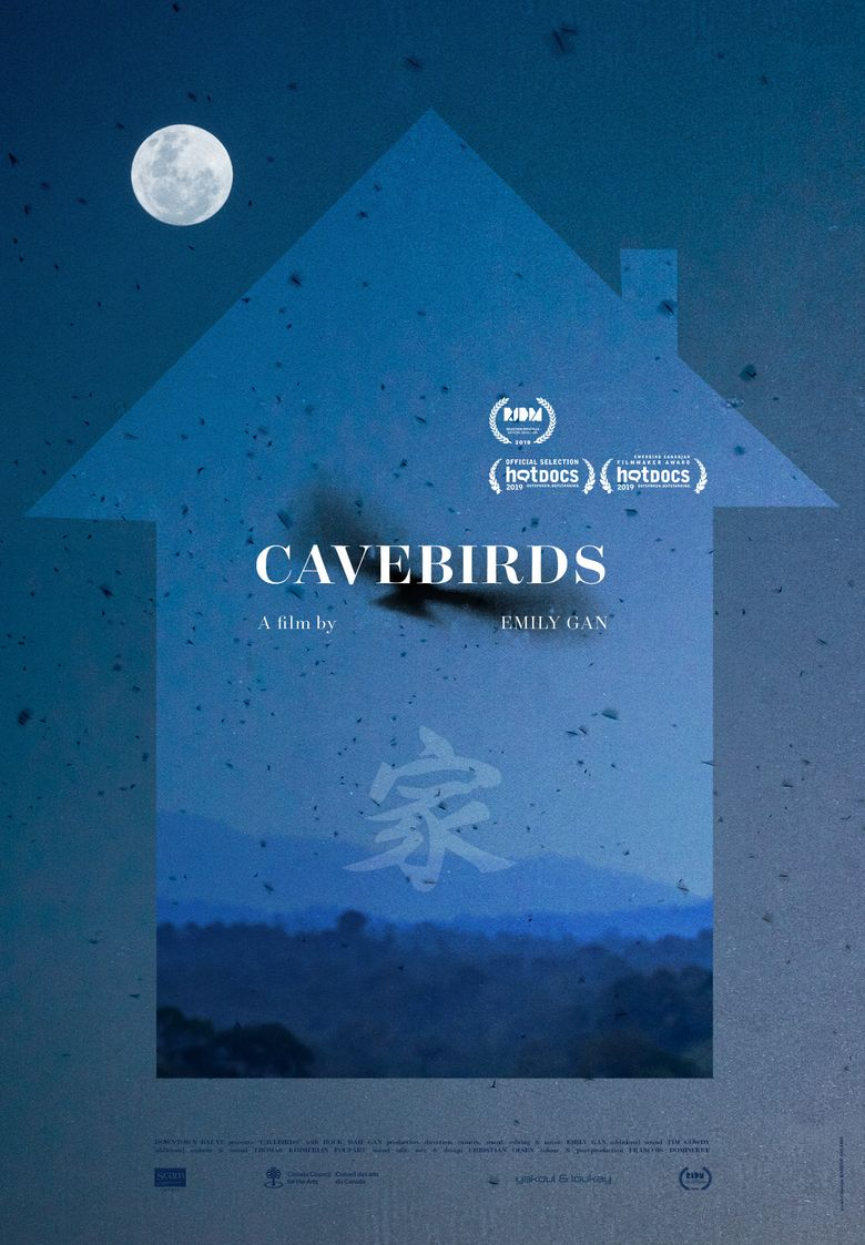 Cavebirds Poster