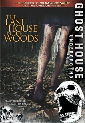 The Last House in the Woods Poster