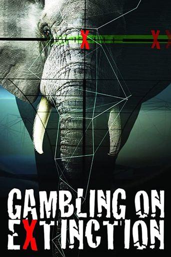 Gambling on Extinction Poster