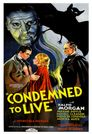 Watch Condemned to Live
