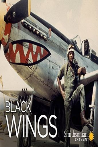 Black Wings Poster