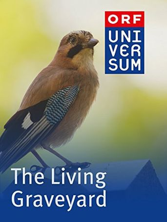 The Living Graveyard Poster