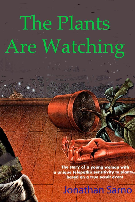 The Kirlian Witness Poster