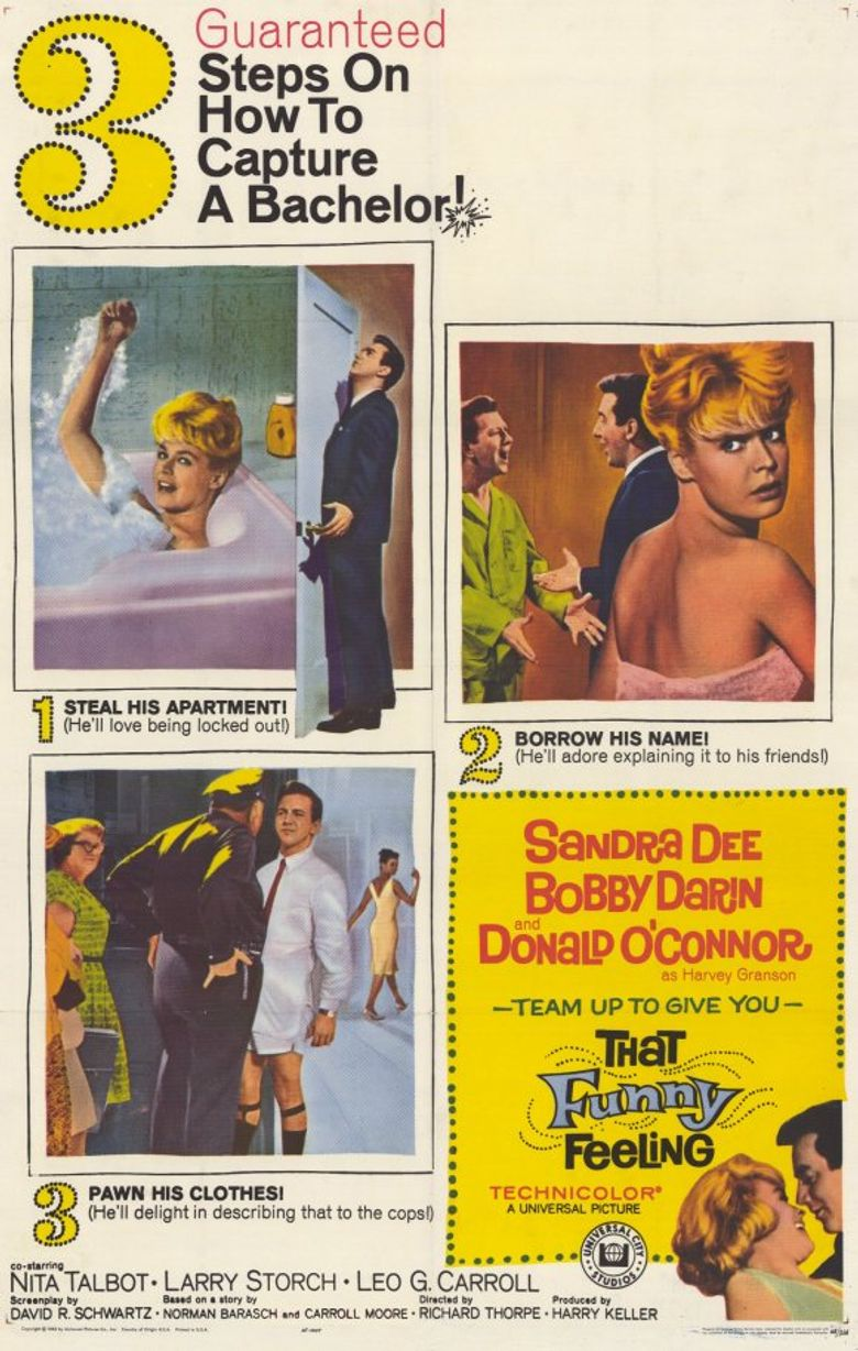 That Funny Feeling Poster