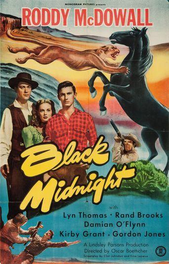 Black Midnight Poster