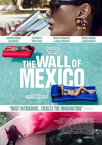 The Wall of Mexico Poster