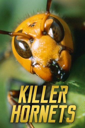 Killer Hornets Poster