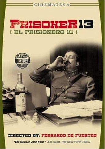 Prisoner 13 Poster
