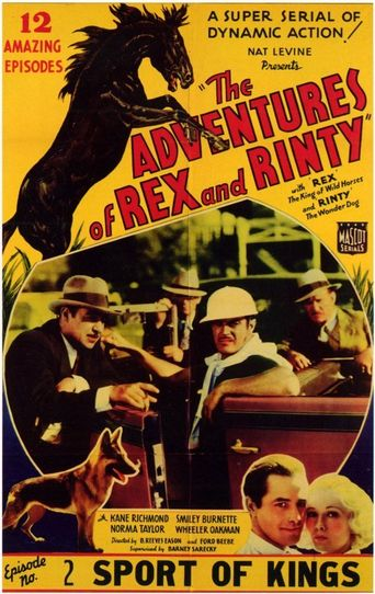 The Adventures of Rex and Rinty Poster